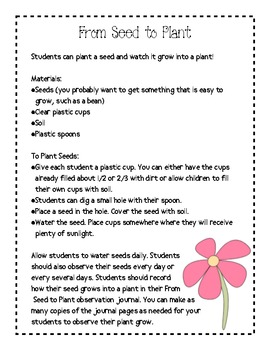 How Does Your Garden Grow?: All About Plants