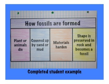 How Fossils Are Formed Interactive Science Foldable