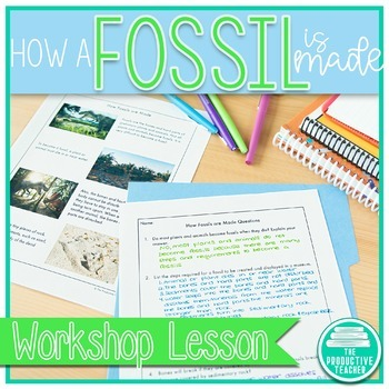How Fossils are Made: Reading Passage Set