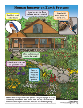 How Living Things Affect Their Environment - Kindergarten NGSS