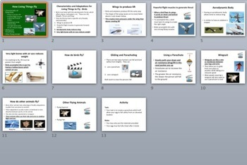 How Living Things Fly - PowerPoint Lesson Package