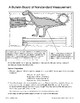How Long Was Oviraptor? (Nonstandard Measurement)