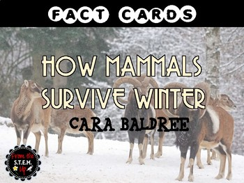 How Mammals Survive Winter FACT CARDS