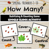 Spring How Many? 1-10 Subitizing, Number Sense & Counting