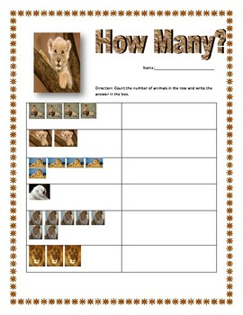 How Many? (A Jungle Themed Counting Packet)