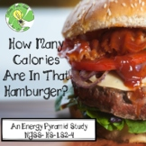 Energy Pyramid Study- How Many Calories Are In That Hamburger?- NGSS-HS-LS2-4
