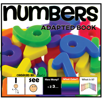 How Many? Color? What? Numbers Book Special Education Autism
