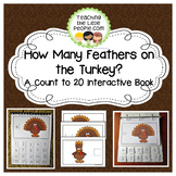 How Many Feathers on the Turkey: A Counting to 20 Interactive Book