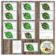 How Many Ladybugs on the Leaf: A Counting to 10 Interactive Book