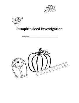 How Many Seeds Are in a Pumpkin? Scientific Investigation