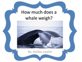 How Much Does A Whale Weigh?