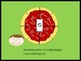 *Best Seller!* How Much Pizza Can You Eat? Music Theory, Notation Explained,