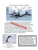 How Penguins Achieve Flight April Fools Prank