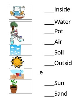 How Plants Grow Primary Quiz