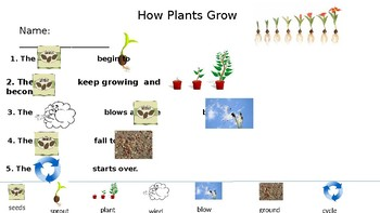 How Plants Grow Rebus Writing Freebie