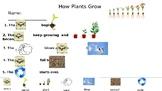 How Plants Grow Rebus Writing Freebie