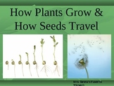 How Plants Grow and How Seeds Travel