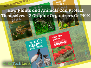 How Plants and Animals Can Protect Themselves: Graphic Organizers for Gr PK-K