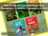 How Plants and Animals Can Protect Themselves: Graphic Org
