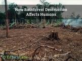 How Rainforest Destruction Affects Humans Distance Learning PDF