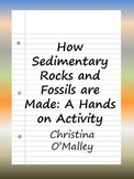 How Sedimentary Rocks and Fossils are Made: A Hands on Activity