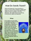 Earth Day Activity: How Seeds Travel (Freebie!!)