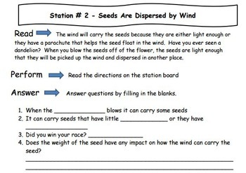 How Seeds Travel - Learning Stations