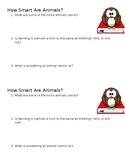 How Smart Are Animals? Mini-Quiz
