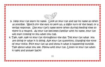 How Smart Is Your Cat?