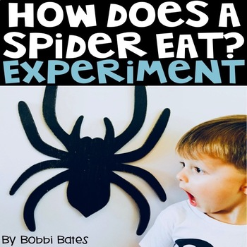 How a Spider Eats Experiment with Matter