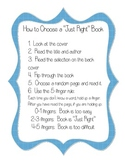 How To Choose a Just Right Book--library sign
