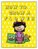 How To Grow A Flower
