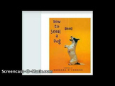 How To Steal A Dog By Barbara O Connor Book Guide and Questions