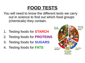 How To carry Out Food Tests