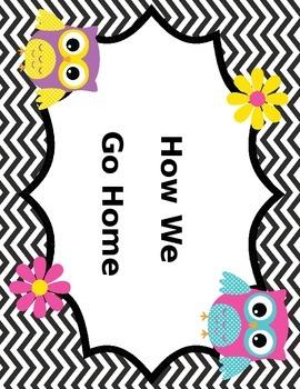 How We Go Home Owl Theme