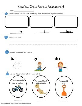 How You Grew Review Assessment - Treasures Unit 1 Story 3