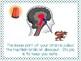 How Your Brain Works - Explaining the Triune Brain