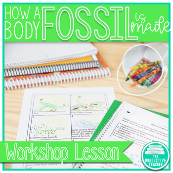 How a Body Fossil is Made - Workshop Lesson and Reading Passage