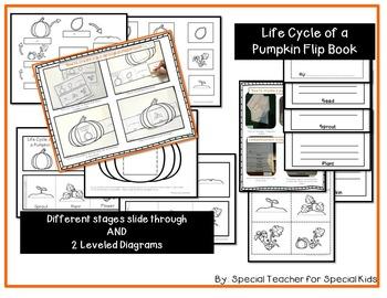 How a Pumpkin Grows--PUMPKIN Life Cycle Activities