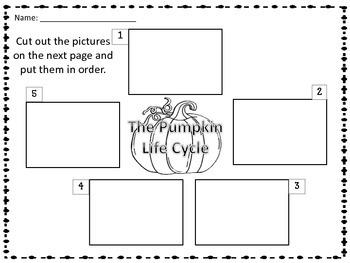 How a Pumpkin Grows Pumpkin Life Cycle Booklet