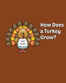 How a Turkey Grows
