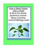 How a seed grows into a plant: A fill in the blank synthes