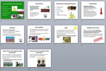 How and Why Plants Germinate - Biology Lesson Package and Germinating Factor Lab