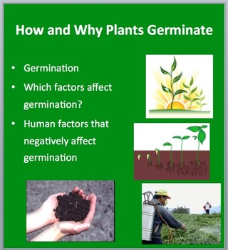 How and Why Plants Germinate - Biology Lesson Package and