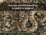 How can animal camouflage be useful to humans?