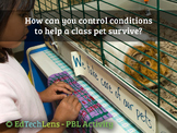 How can you control conditions to help a class pet survive?