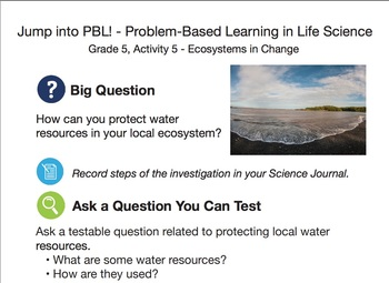 How can you protect water resources in your local ecosystem?