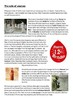 How civilised were the Romans? Project Pack - 23 Pages
