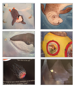 How deep is the sea by Anna Milbourne and Serena Riglietti activity pack