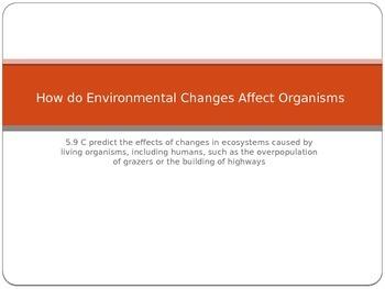 How do Environmental Changes Affect Organisms?